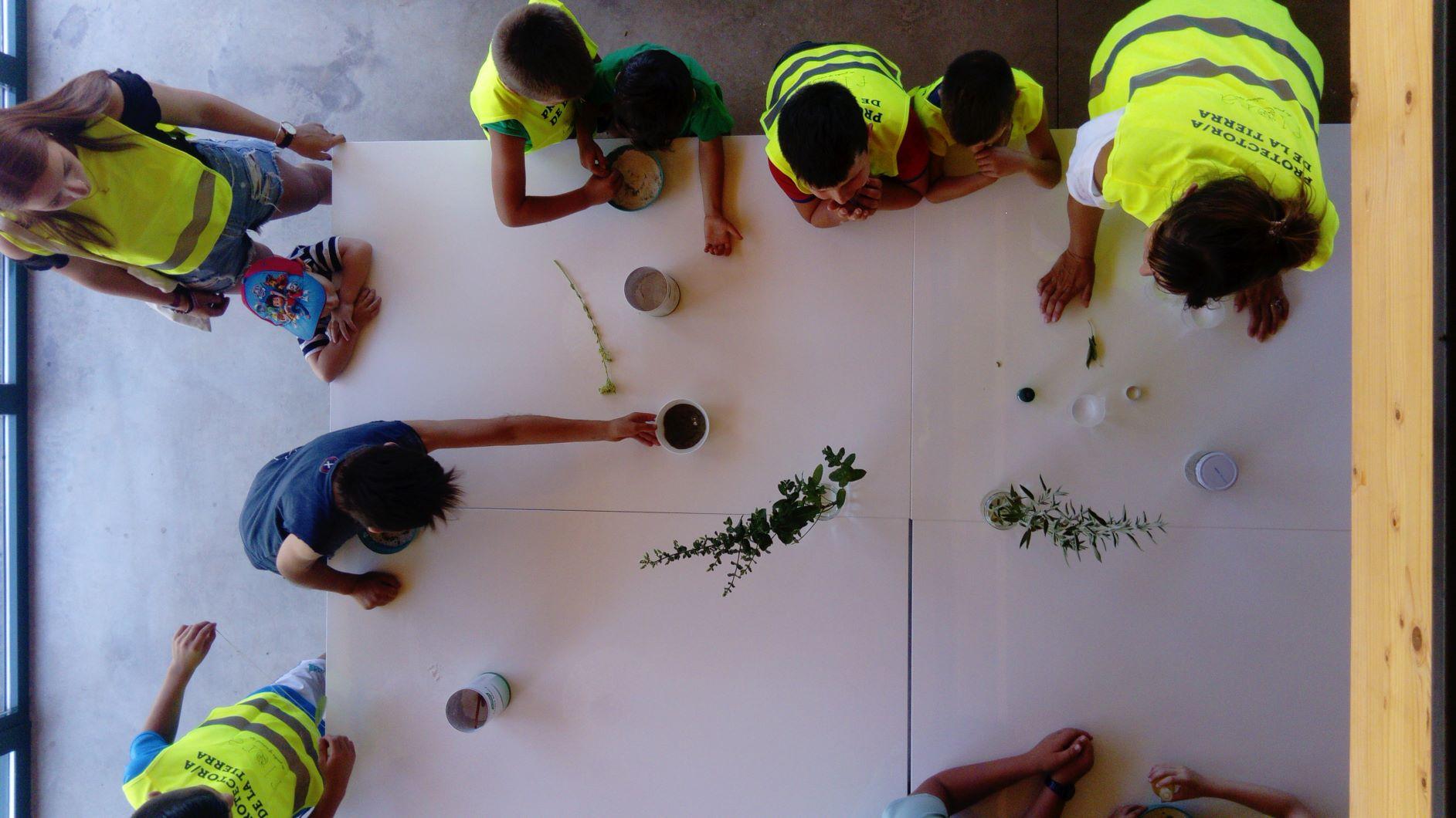 actividades niños Flora